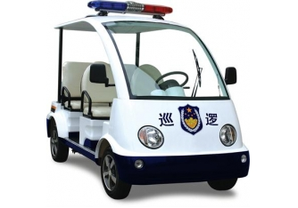 Police electric vehicles